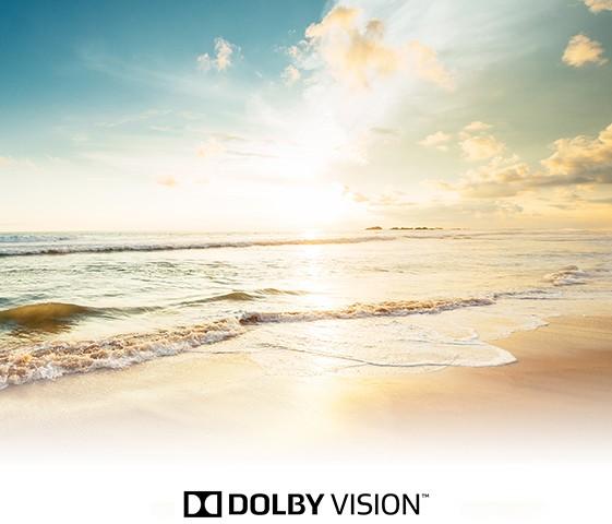 Des images 4K exceptionnelles grâce au Dolby Vision