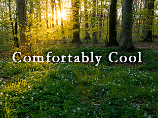 Comfortably Cool
