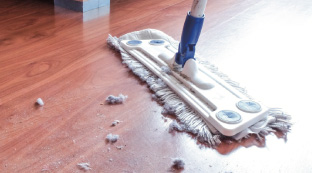 Major types of mould found in house dust: