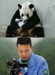 Wolong Panda Club