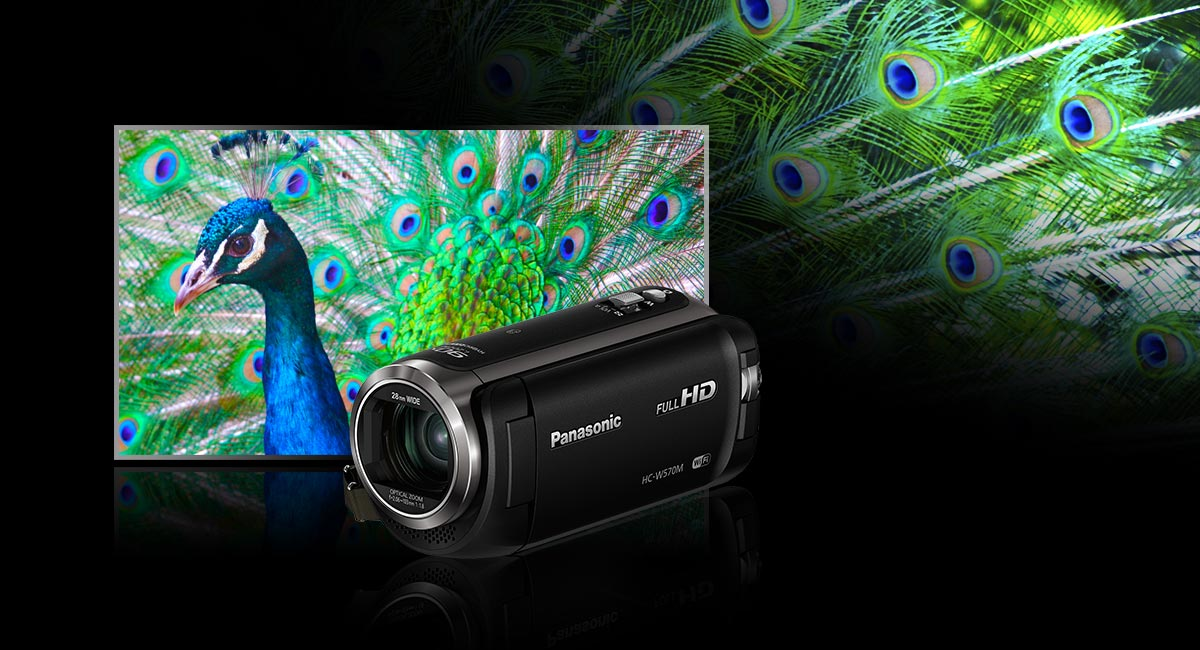 http://www.panasonic.com/content/dam/Panasonic/au/en/feature/camcorders/2015/0126/Feature_006.jpg