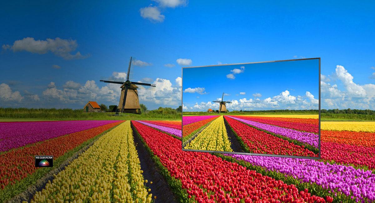 Breites und natürliches Farbspektrum