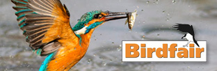See you at the Birdfair 2017 this weekend