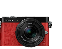 LUMIX GM
