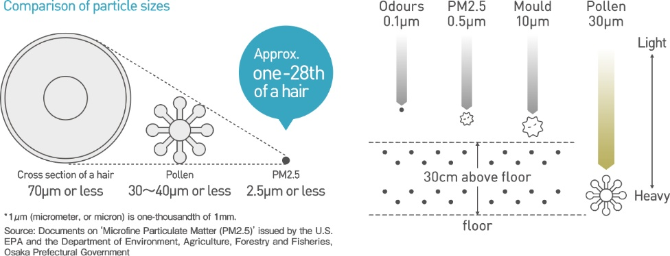 image:Comparison of particle sizes