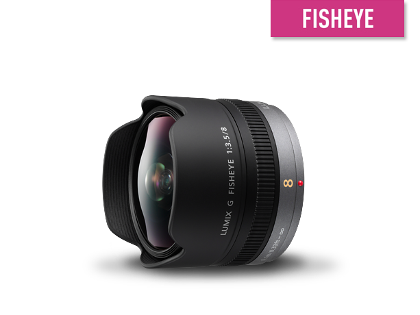 Photo of H-F008E Interchangeable Lens