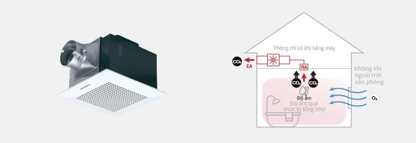 Hình ảnh một quạt thông gió gắn trần trông như thế nào và quạt được thiết kế để loại bỏ độ ẩm ra khỏi nhà như thế nào.