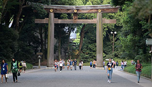 Photo: Gateway to Meiji Shrine