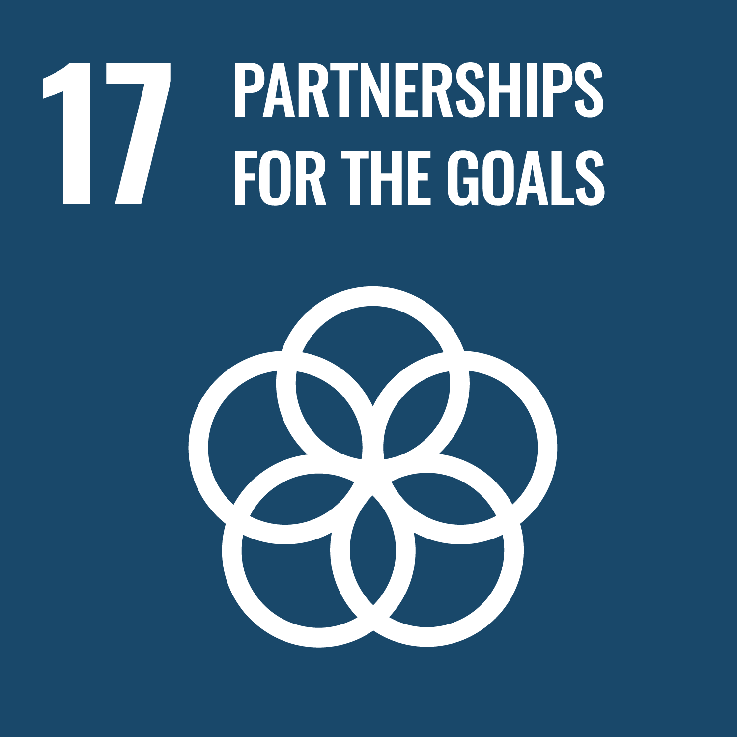 Goal 17: Partnerships for the goals