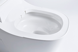 A full automatic cleaning toilet