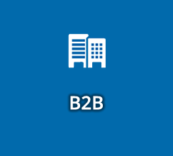 Business Initiatives B2B