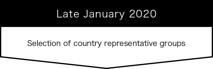 Late January 2020 Selection of country representative groups
