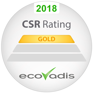 2018 CSR Rating GOLD EcoVadis