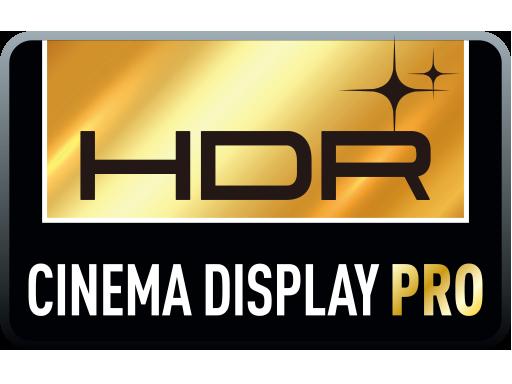 Écran professionnel de cinéma HDR