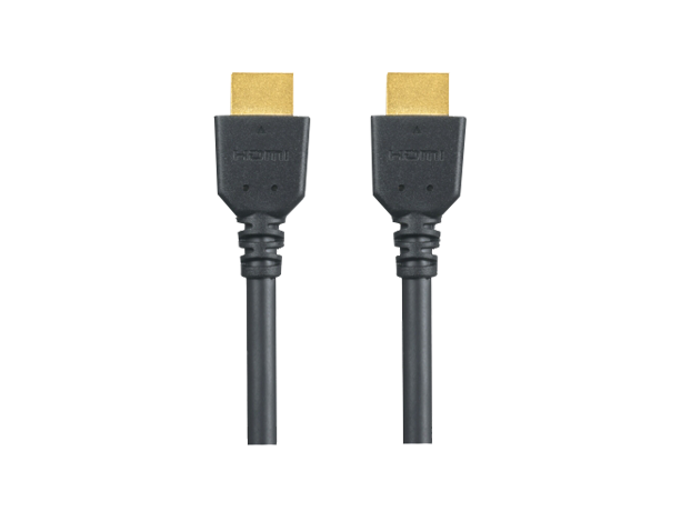 RP-CHES30 HDMI kabel
