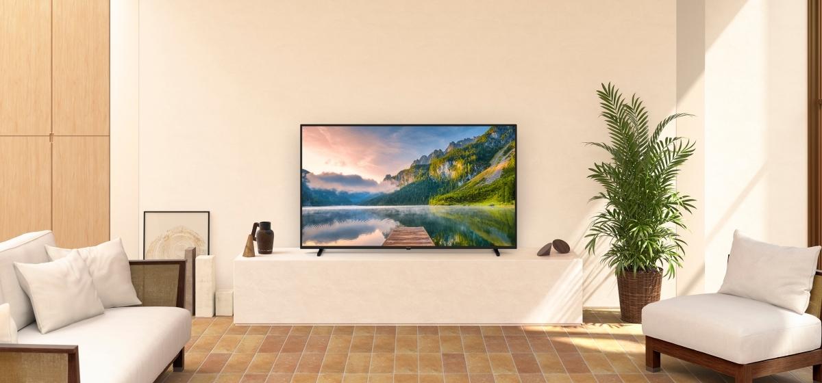 LED TV TX-65JX800E