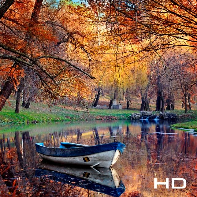 Απόδοση εικόνας HD