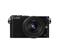 LUMIX Digital Single Lens Mirrorless Camera LUMIX GM1