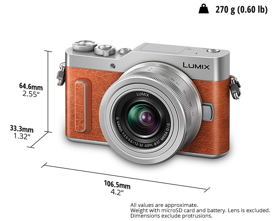 LUMIX Digital Single Lens Mirrorless Camera DC-GF10
