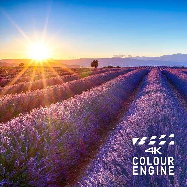 4K Colour Engine