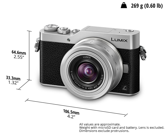 LUMIX Dijital Tek Lensli Aynasız Kamera DC-GX800K