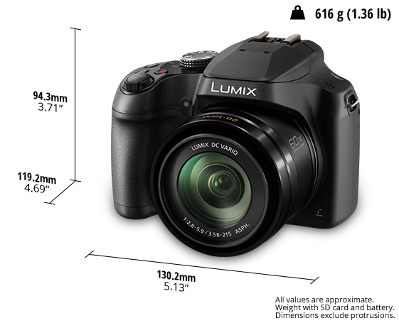 LUMIX Digital Bridge Camera DC FZ82