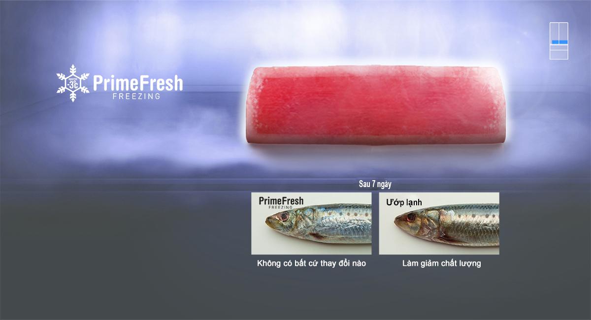 Giữ thịt cá trọn tươi ngon lên tới 7 ngày