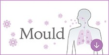 Inhibits activity of airborne mould*¹⁵, and adhered mould*¹⁶