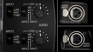 2-Channel XLR Audio Input Terminals