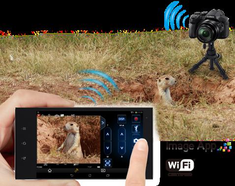 Partagez votre créativité sans fil via le Wi-Fi®
