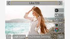 Like709 Gamma (ITU-R BT.709) & Knee Control