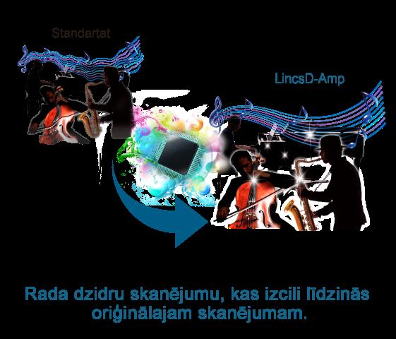 LincsD-Amp